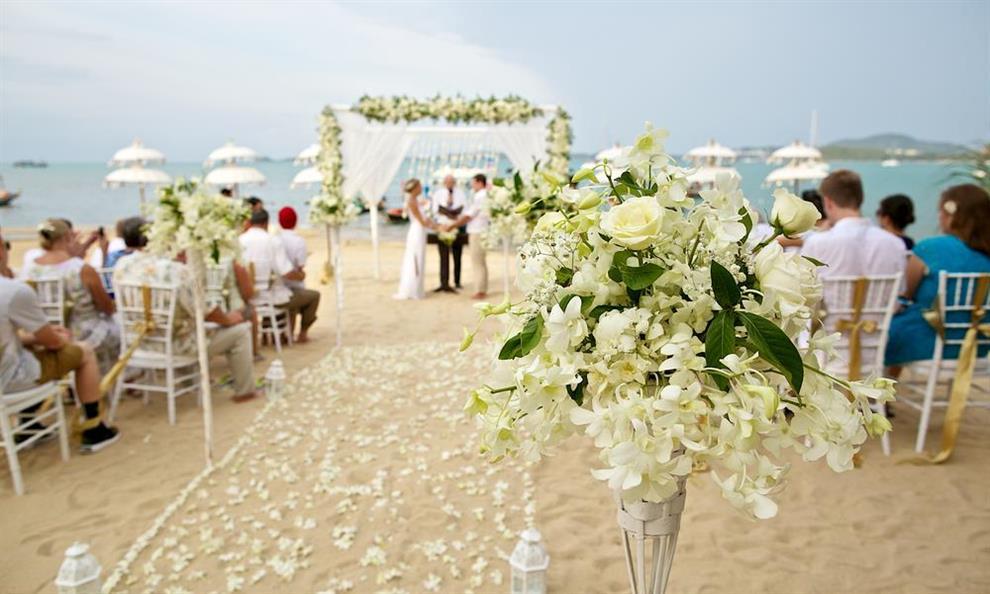 מזל טוב חתונות